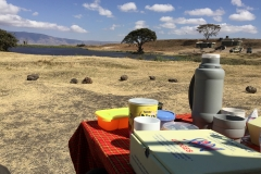 Lunch in the Ngorongor Crater