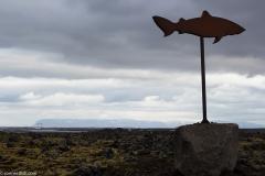 Bjarnarhofn Sign