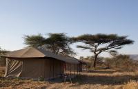 Acacia Camp