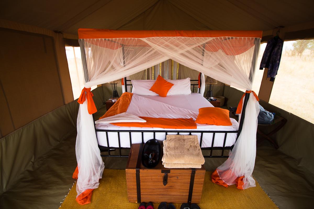 Kenzan Camp Tent
